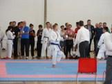 hinode_karate_diakolimpia_2015_46