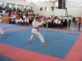 hinode_karate_diakolimpia_2015_51