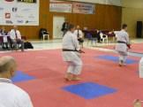hinode_karate_Eger_SDUN_2015_0155