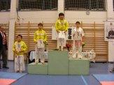 hinode_karate_fujinaga_2015_14