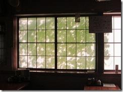 緑のカーテン店内