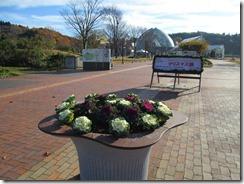 県立植物園11月1