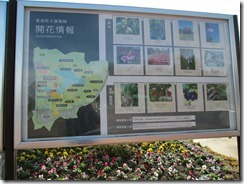 県立植物園11月2