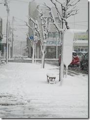 1月19日バス停