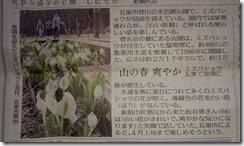 4月1日新潟日報