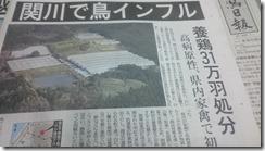 11月30日日報