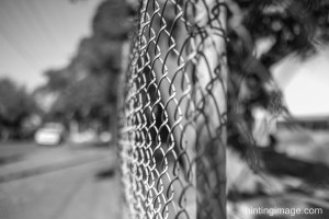 Fences black and white photo