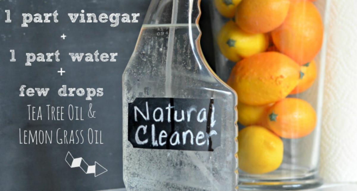 vinegar natural cleaner recipe
