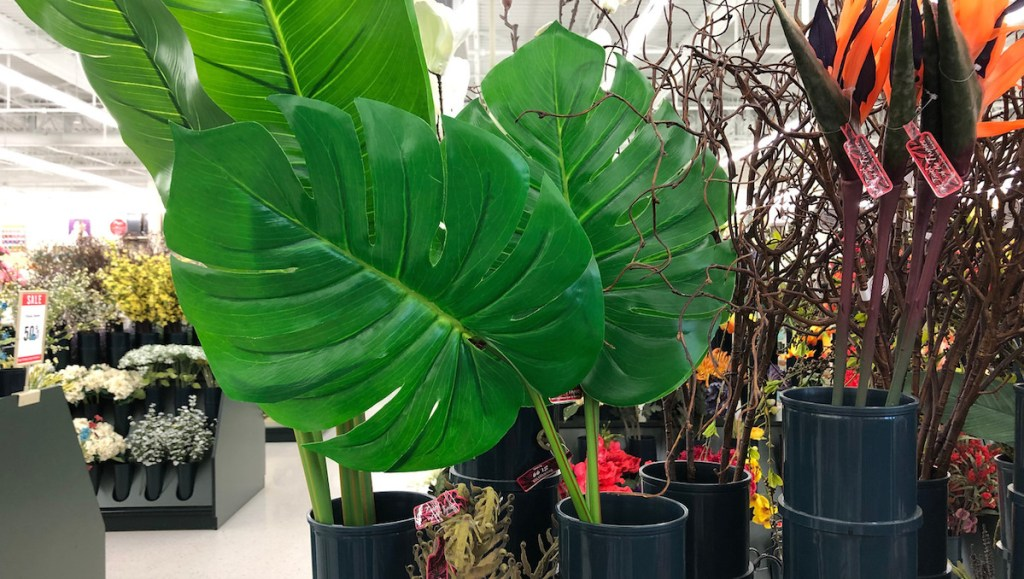 two green palm leaves sitting in a black tube in floral aisle in store
