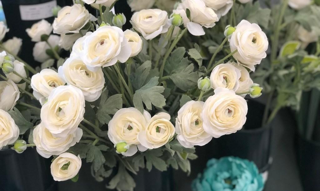 white Ranunculus flowers in a bundle