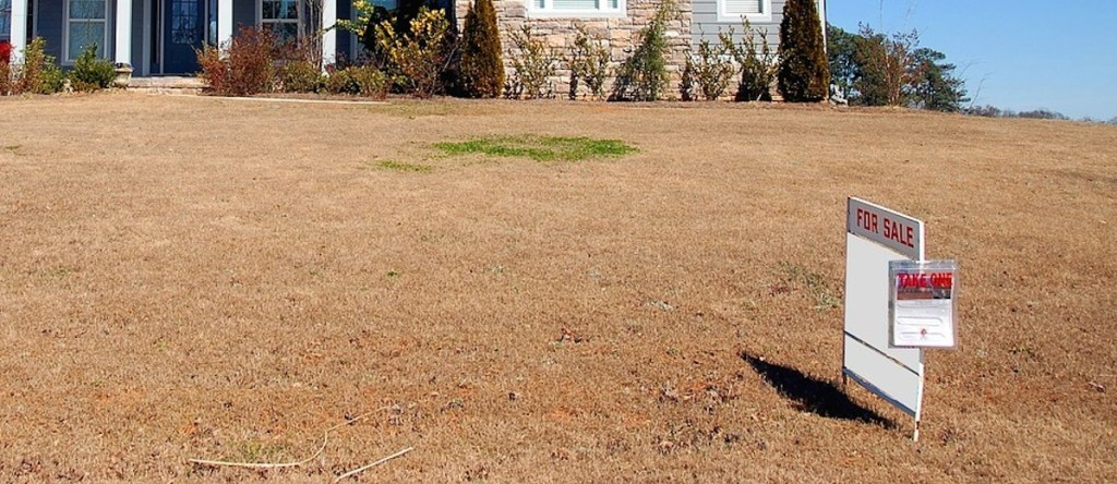 brown dead grass with for sale sign