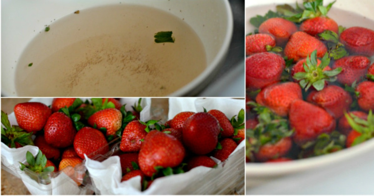 dirty water bowl next to bowl of fresh strawberries and strawberries in containers with paper towel