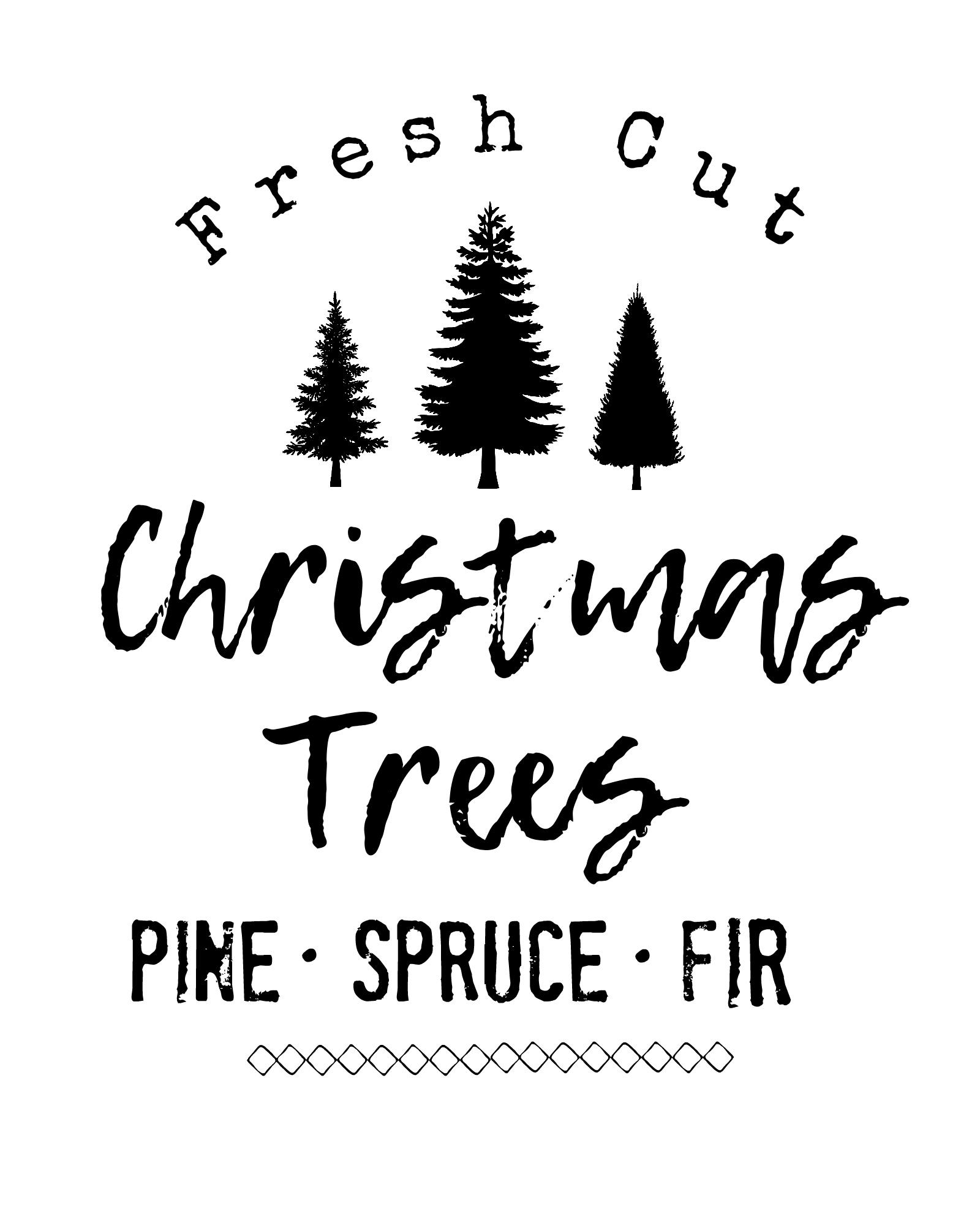 You Cut Christmas Trees Near Me