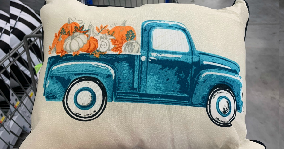 fall ing in love with these 5 pillows
