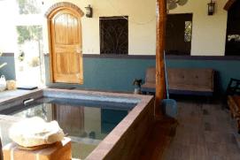 The eco pool