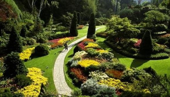 Modelos de jardins (10)