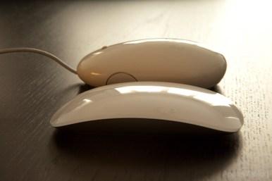 Magic Mouse #11
