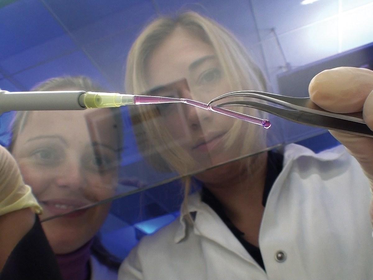 Vaso sanguineo artificial