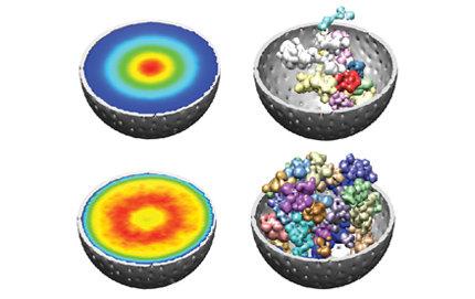 Genoma 3D