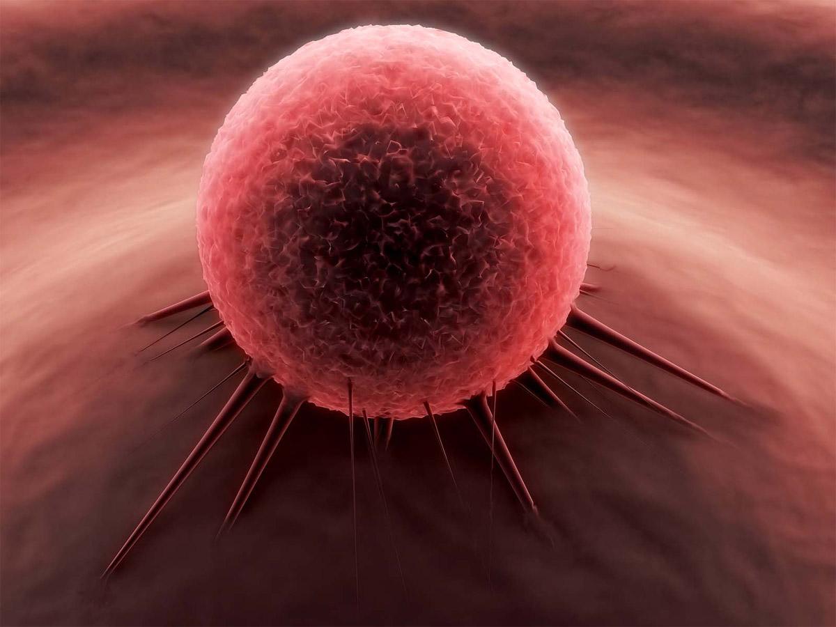 GeneRun- un videojuego que intentará descifrar la cura contra el cáncer 2