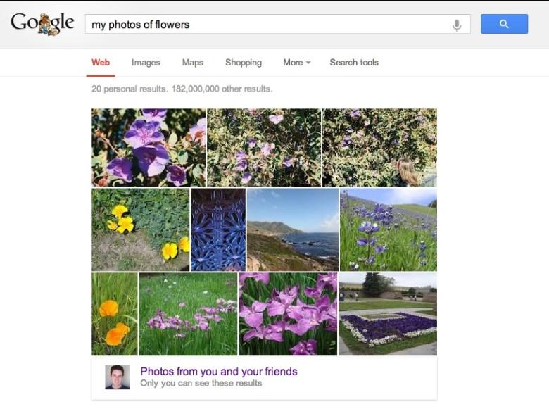 is fotos de flores - Google introduce la visión por computador al buscador de imágenes