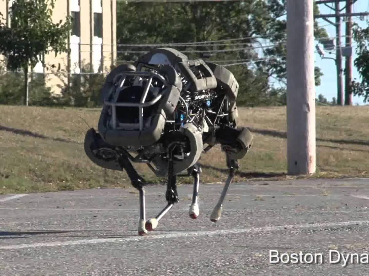 WildCat Boston Dynamics