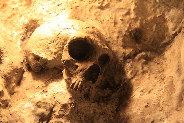 virus de neandertales