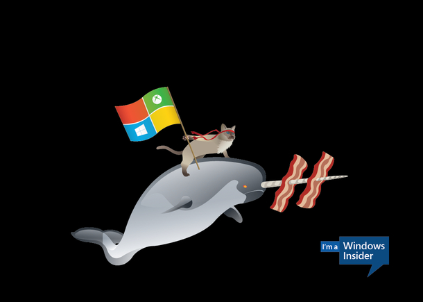 wallpapers del meme de windows 10 1