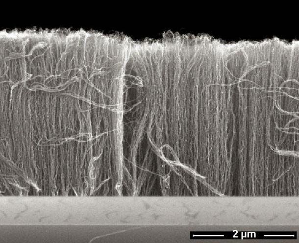 Hileras de nanotubos de carbono. Fraunhofer.