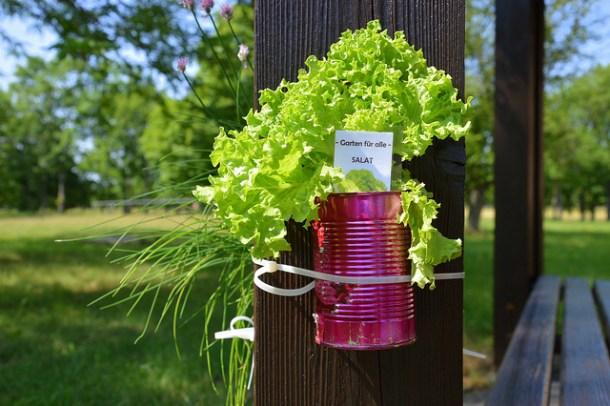 Cómo reducir tu huella ecológica