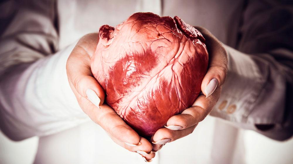 trasplantes de corazón