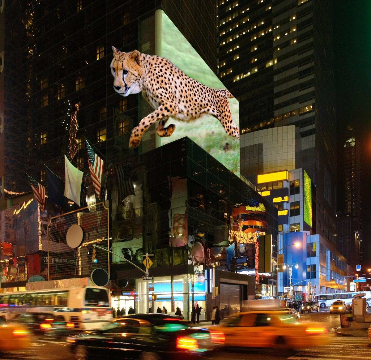 publicidad en 3D