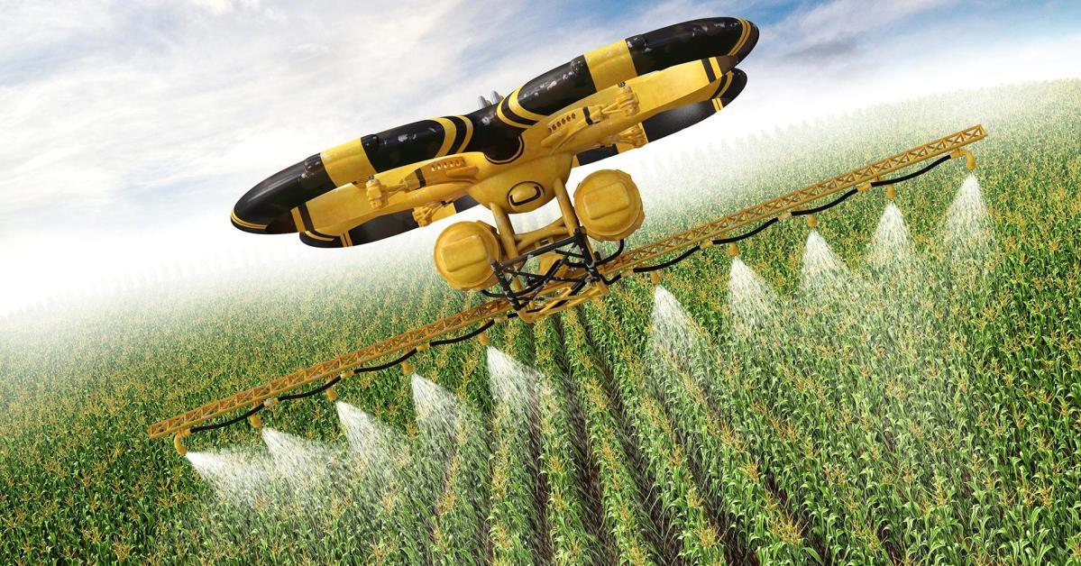 Plagas en cultivos