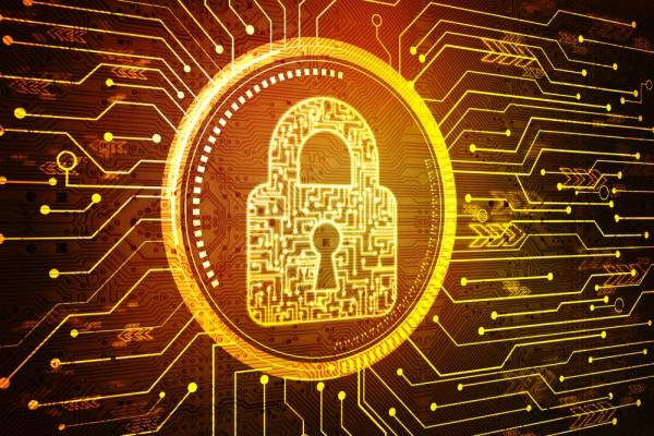 La seguridad digital de los comercios electrónicos será fundamental.