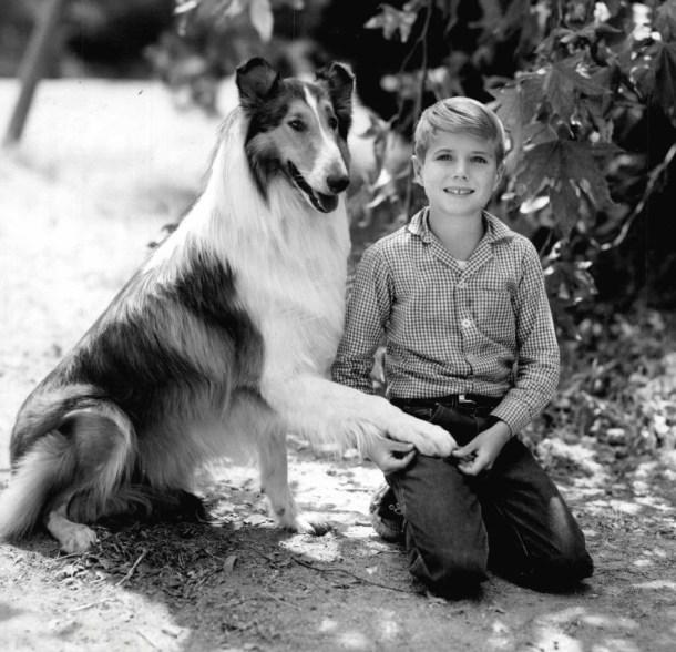 Efecto Lassie