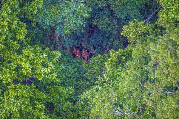 uncontacted-tribe-amazon-photography-ricardo-stuckert-11