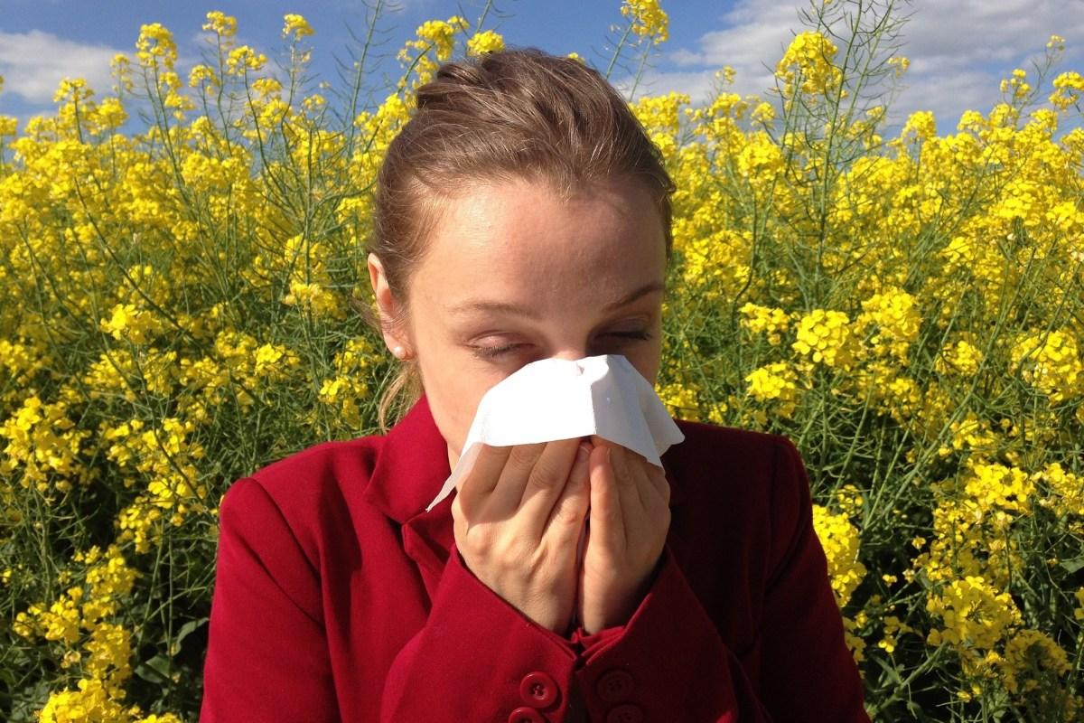 aguantar un estornudo