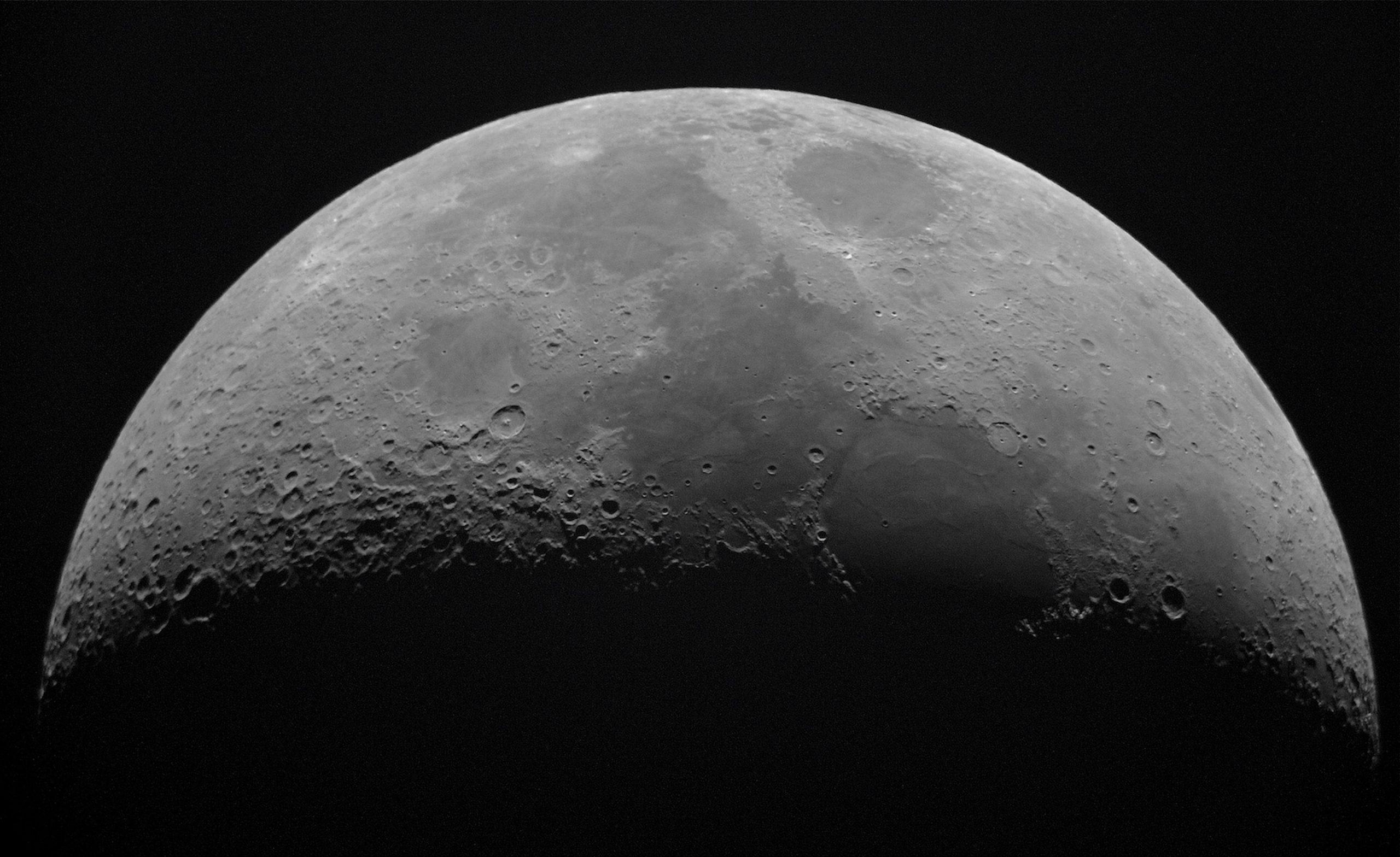 Hallan nuevos datos sobre la semilla que germinó en la Luna