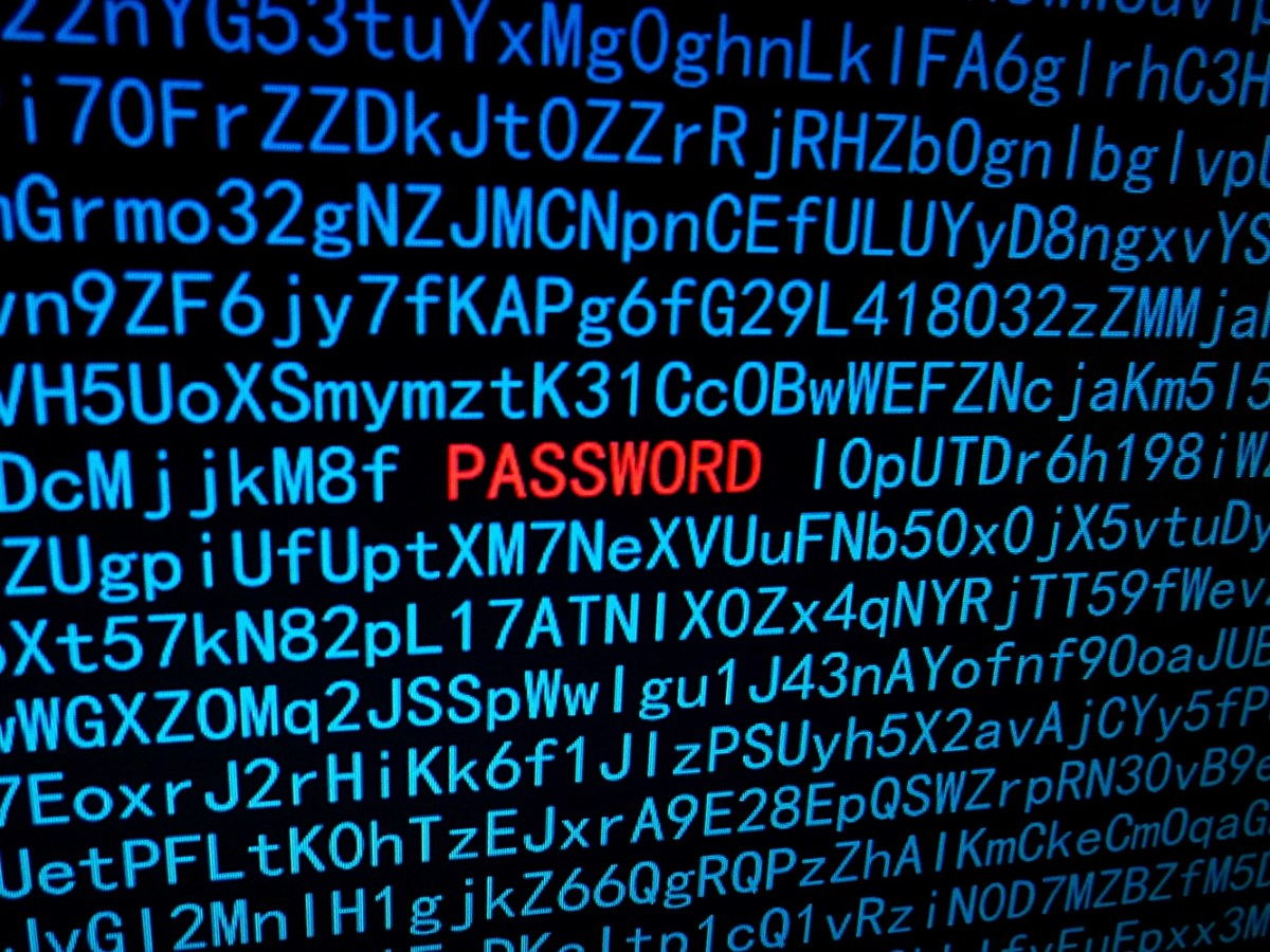 Código web con la palabra Password en rojo