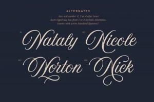 Aurora Script by Andrey Sharonov Alternatives