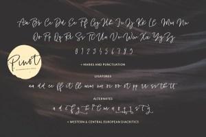 Pinot Handwritten Font and Logos