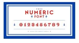 FREE Numeric Font