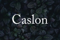 Caslon Typeface min