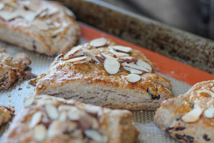 These Cranberry Almond Scones are perfect and delicious! So easy to make . . they are practically fool-proof! You've got to try this recipe!
