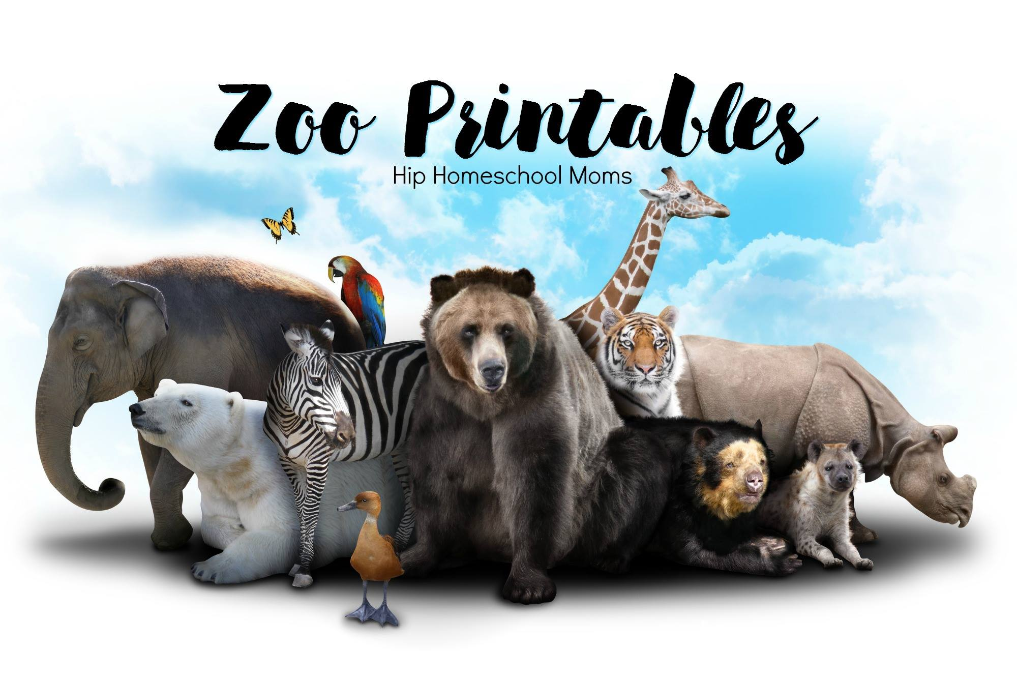 Zoo Related Printables