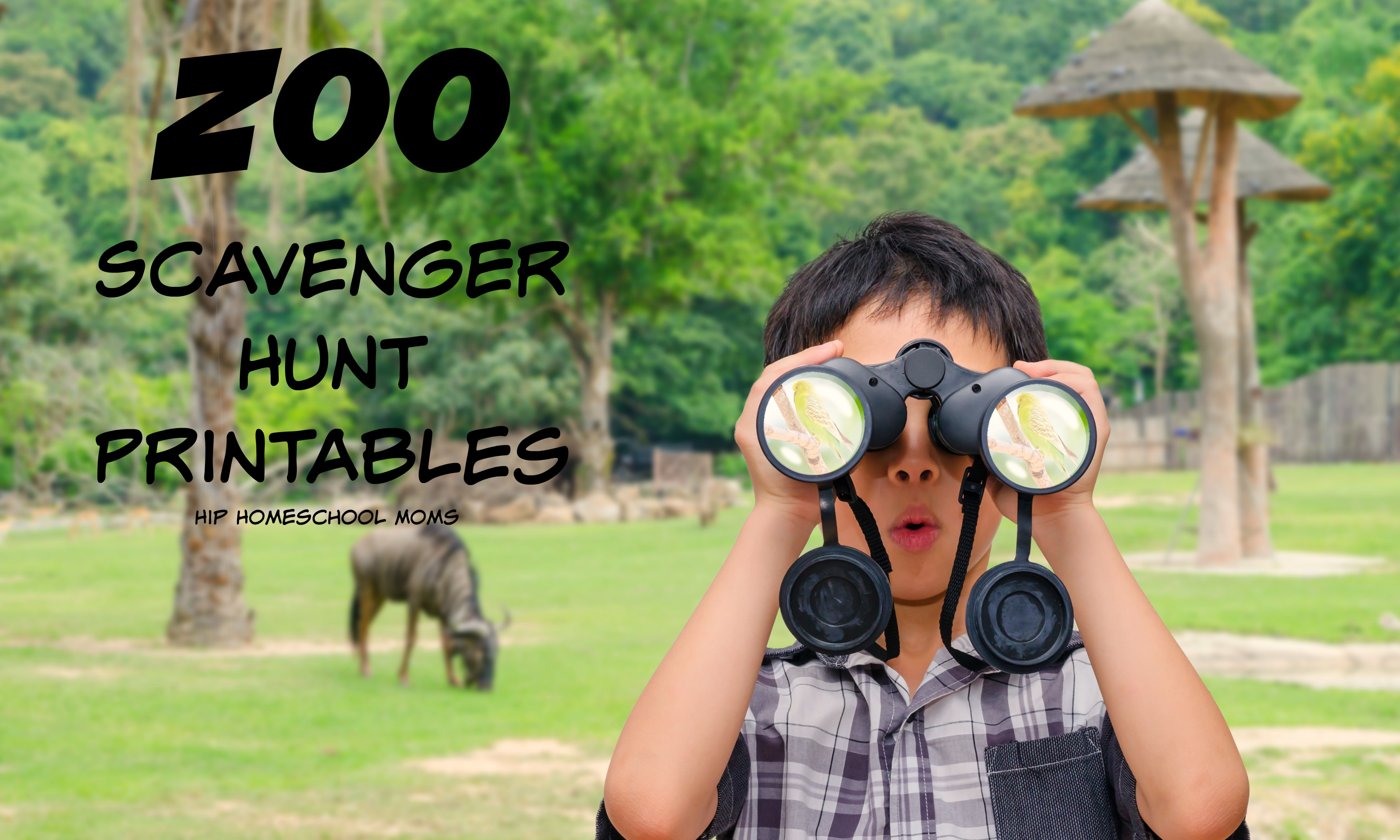 Zoo Scavenger Hunt Printables And Book Lists