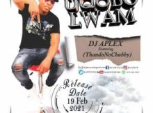DJ APLEX SA – Uqobo Lam ft ThandoNoChubby Mp3 Download