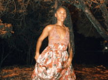 Fentse Leaves Free Mp3 Download Fakaza 2021