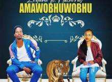 Zodumo Amawobhuwobhu Mp3 Download Fakaza