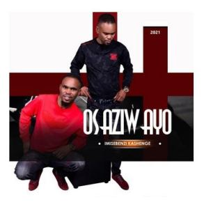 Osaziwayo Imisebenzi Ka Shenge Album Mp3 Download Fakaza